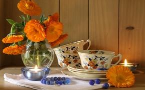 Wallpaper bouquet, Cup, candle, calendula, still life, flowers