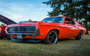 Picture red, style, classic, Cougar, the front