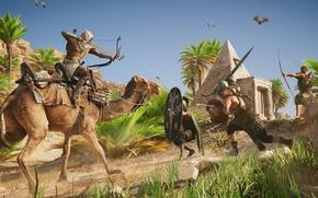 Picture camel, Egypt, assassin, Assassin's Creed Origins