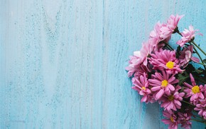 Picture flowers, background, chrysanthemum, wood, pink, flowers, spring