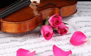 Picture notes, violin, roses