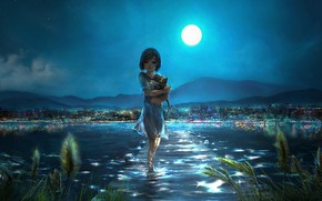 Picture water, night, the city, kitty, the moon, girl