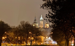 Picture trees, night, lights, castle, Poland, lights, Krakow, Wawel
