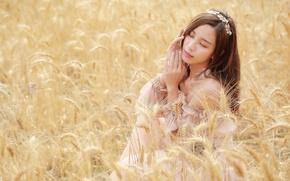Picture field, mood, ears, Asian
