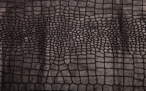 Picture leather, black, texture, background, leather, crocodile skin