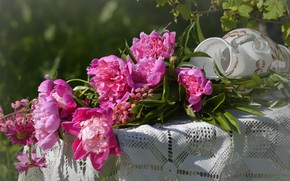 Picture summer, flowers, bouquet, peonies, popular, NIF
