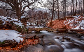 Wallpaper stones, autumn, forest, stream, leaves, trees, nature, snow