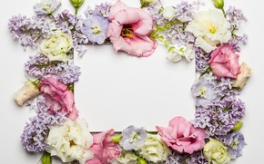 Wallpaper flowers, flowers, frame, floral, lilac, roses, composition, pink, lilac, wood, beautiful, rose