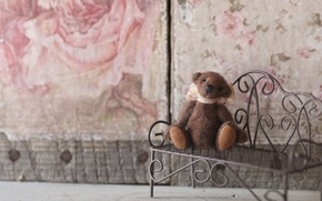Picture bench, mood, toy, shop, bear, Teddy bear