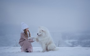 Picture winter, snow, dog, girl, friends, Samoyed