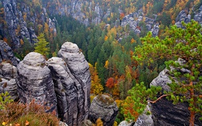 Picture autumn, forest, trees, stones, rocks, Germany, the view from the top, Saxon Switzerland National Park