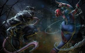 Picture Language, Web, Costume, Hero, Superhero, Hero, Web, Marvel, Villain, Spider-man, Comics, Spider-Man, Venom, Venom, Peter ...