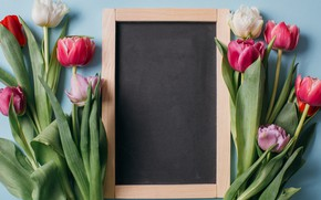 Picture flowers, background, Tulips, Board, buds