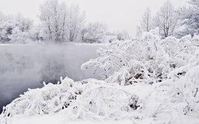 Picture Winter, Snow, Pond, Frost, Blizzard, Winter, Frost, Snow, Pond, Blizzard