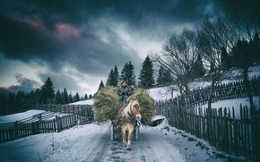 Picture winter, horse, village, hay, who