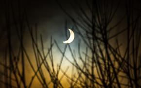 Picture the sun, the moon, Eclipse, solar Eclipse, astronomy, phenomenon
