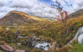 Picture landscape, mountains, stream, stones, tree, Wales