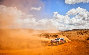 Picture The sky, Sand, 2008, Dust, Sport, Speed, Race, Peugeot, Lights, Red Bull, Rally, Rally, Sport, …