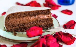Picture chocolate, cream, rose petals, a piece of cake