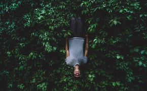 Picture background, surrealism, Wallpaper, mood, guy, green foliage