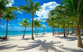 Picture sand, sea, beach, the sky, the sun, clouds, tropics, palm trees, coast, horizon
