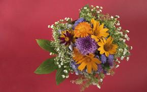 Picture flowers, bouquet, yellow, orange