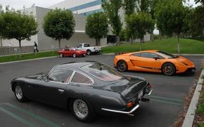 Picture Lamborghini, 350 GT, 1964