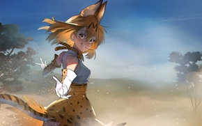 Picture girl, anime, tail, pretty, asian, japanese, bishoho, Kemono Friends