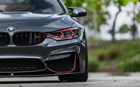 Picture BMW, Front, Face, Sight, LED, F83, Evel