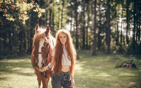 Picture summer, girl, hair, horse, red
