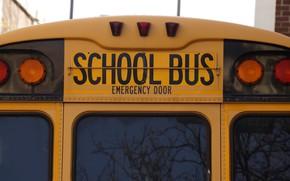 Picture machine, USA, USA, America, school bus, school bus, American