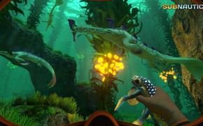 Picture animals, plants, the bottom, Subnautica