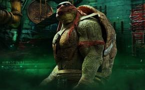 Picture cinema, TMNT, Raphael, movie, Teenage Mutant Ninja Turtles, ninja, hero, film, shinobi, yuusha, bysachso74