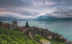 Picture lake, Switzerland, Lake Geneva, Vaud, Saint-Saphorin