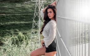Picture landscape, sexy, pose, model, shorts, portrait, makeup, figure, brunette, the fence, hairstyle, blouse, power lines, …