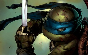 Picture look, sword, katana, mask, ninja, bug, TMNT, Leonardo, Leonardo, Teenage Mutant Ninja Turtles, teenage mutant …