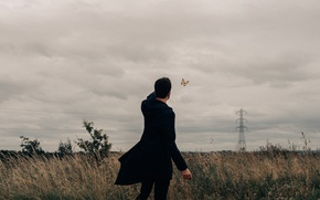 Picture field, clouds, butterfly, guy, power lines, Bird Man