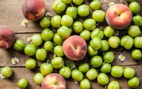 Picture chamomile, fruit, green, peaches, drain