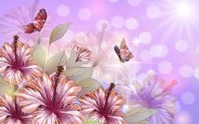 Picture butterfly, flowers, Wallpaper