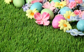 Picture grass, flowers, Easter, flowers, spring, Easter, eggs, Happy, the painted eggs