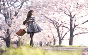 Picture girl, toy, doll, Sakura, suitcase