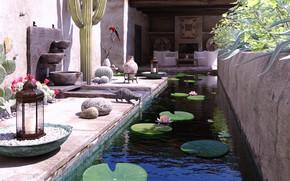 Picture cat, parrot, pond, Villa, bassin