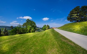 Picture road, the sky, trees, Switzerland, meadow, Switzerland, St. Gallen, Canton of St. Gallen, The city …
