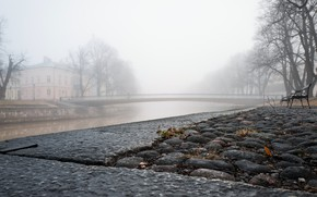 Picture the city, fog, river, bench