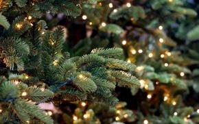 Wallpaper New Year, Christmas, merry christmas, decoration, xmas, fir tree