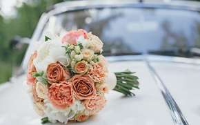 Picture roses, pink, peonies, wedding bouquet, roses, wedding