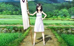 Picture girl, anime, japanese, bishojo, Summer Wars