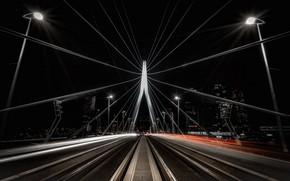 Picture Holland, Rotterdam, Erasmus Bridge