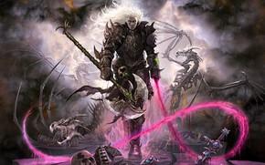 Picture skeleton, warrior, axe, skull, Ater