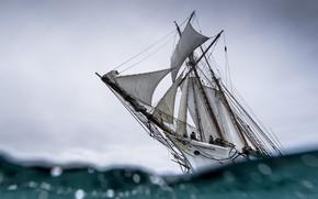 Picture sea, ship, sail